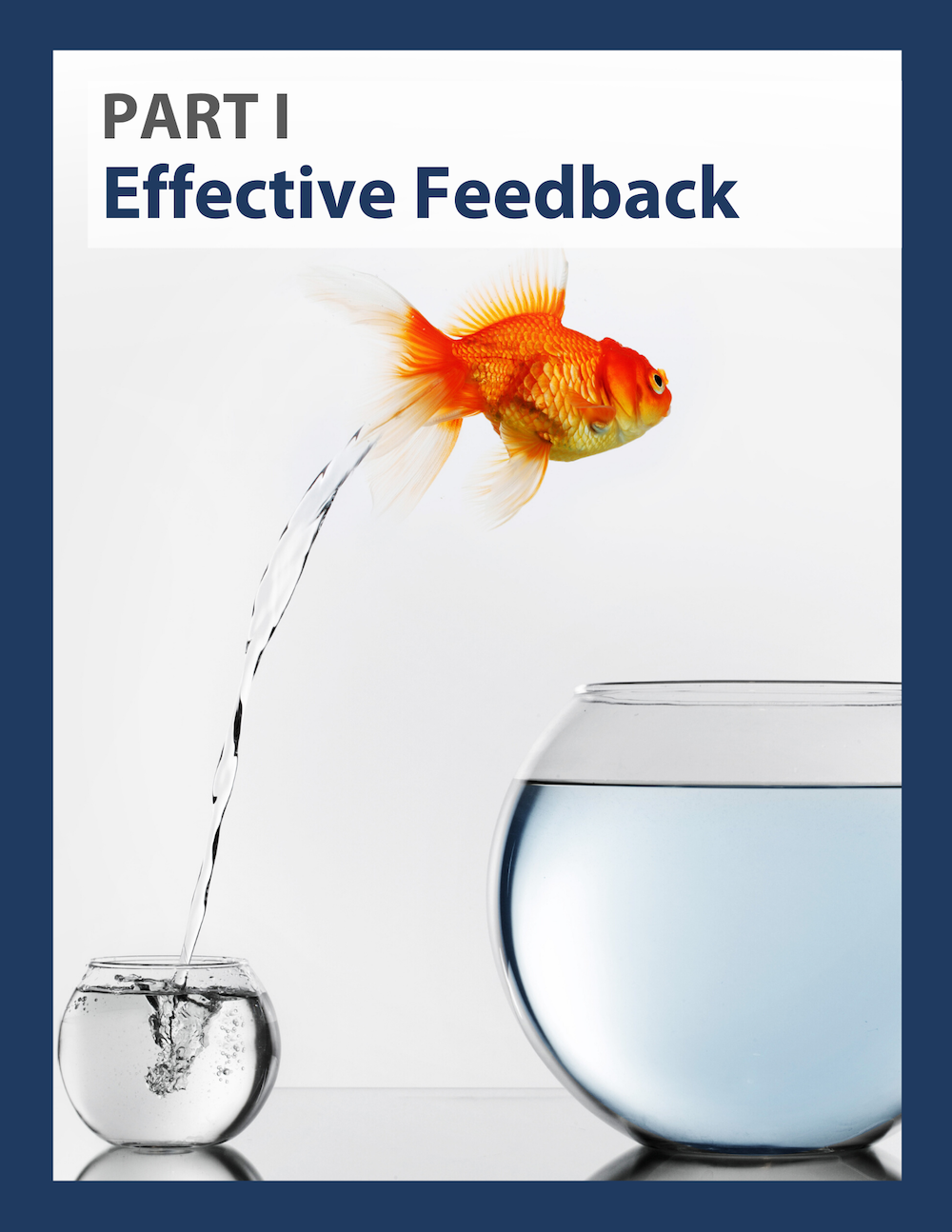 Link to a PDF  - Part 1: Effective Feedback