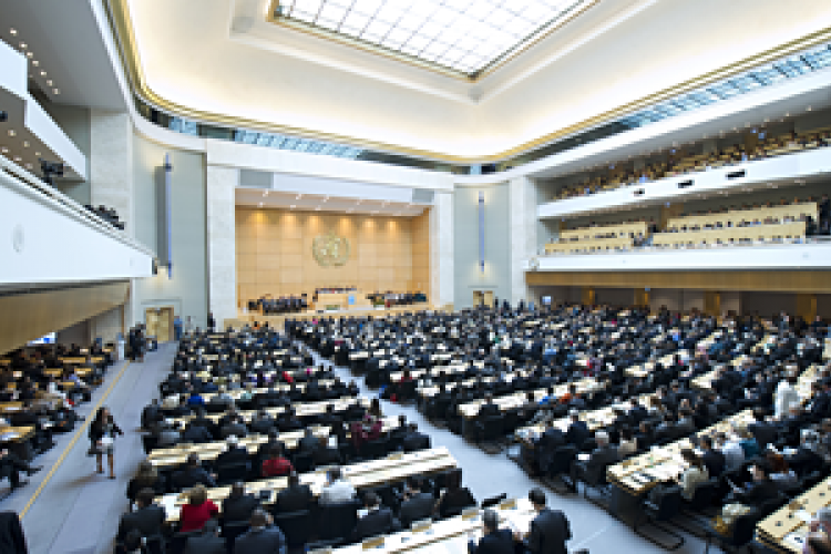 Lessons from the sixty-eighth World Health Assembly